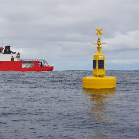 [:en]elastomer-buoy-aton[:]